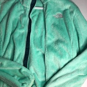 The north face mint green jacket